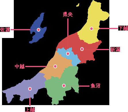 キャリア ステーション 新潟